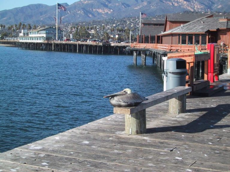 How to Easy Find the Nr.1 Copywriter in Santa Barbara