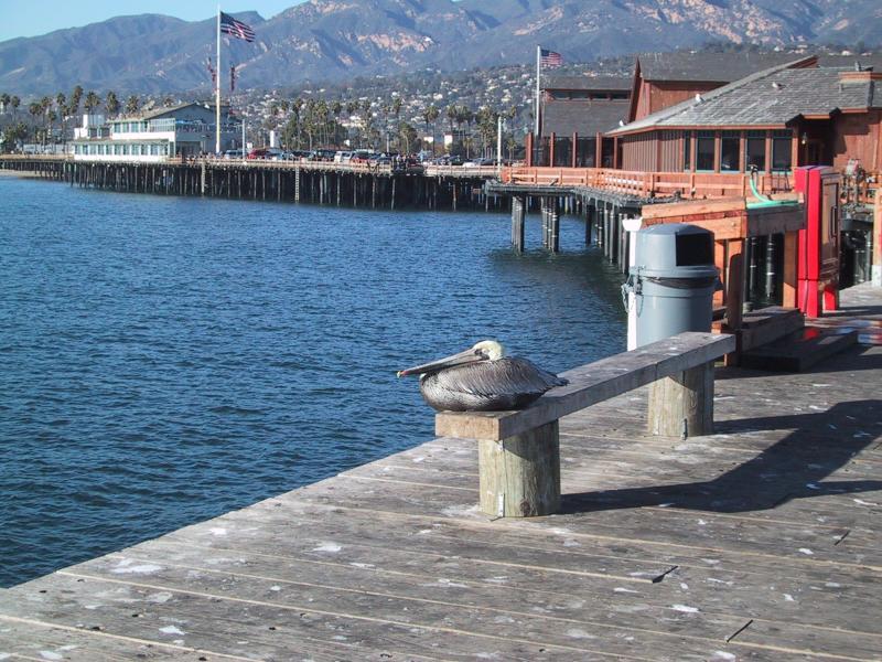 Copywriter in Santa Barbara